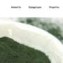 Разработка сайта для Ритмико Биотех